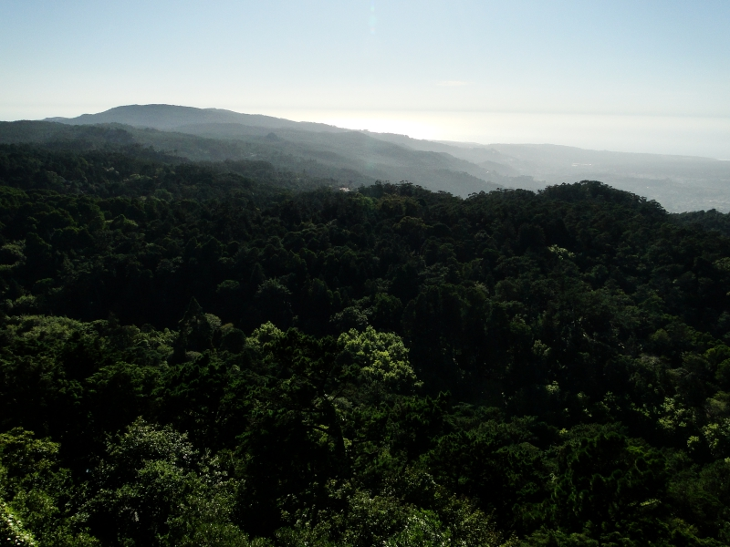 The View from the Palace in Sintra Portugal