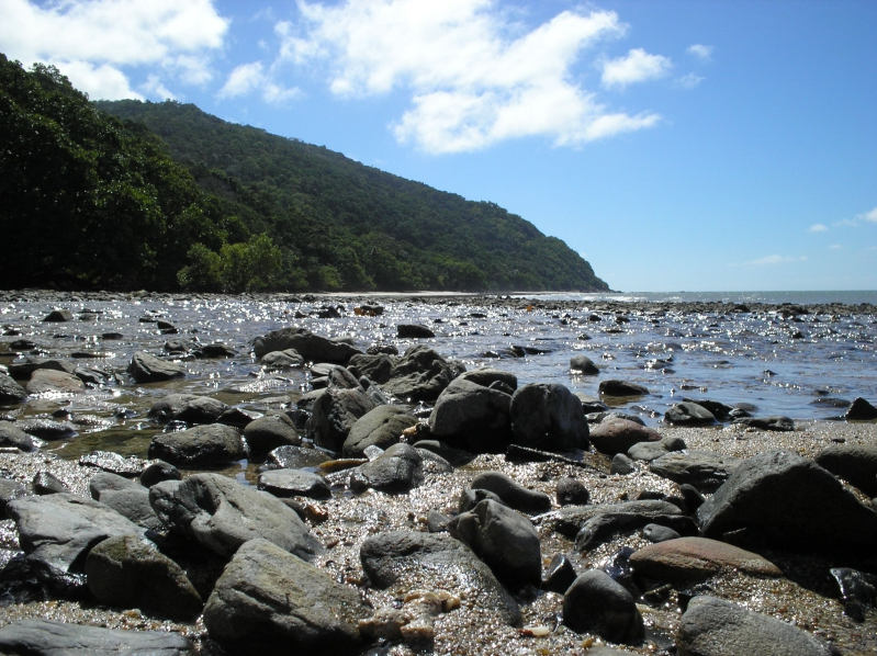 Beach At Cape Tribulation Australia
